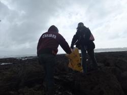 International Beach Clean up & PADI Project AWARE Dscf1424