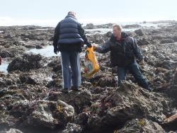 International Beach Clean up & PADI Project AWARE Dscf1425