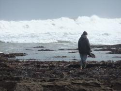 International Beach Clean up & PADI Project AWARE Dscf1426