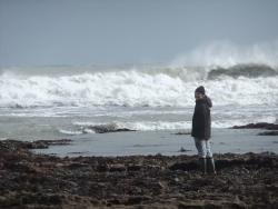 International Beach Clean up & PADI Project AWARE Dscf1427