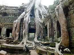 Angkor (Cambodge) Tap19510