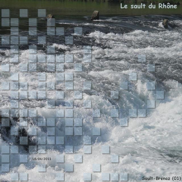 Challenge visiteurs du 29 avril au 13 mai 2011 Le_sau10