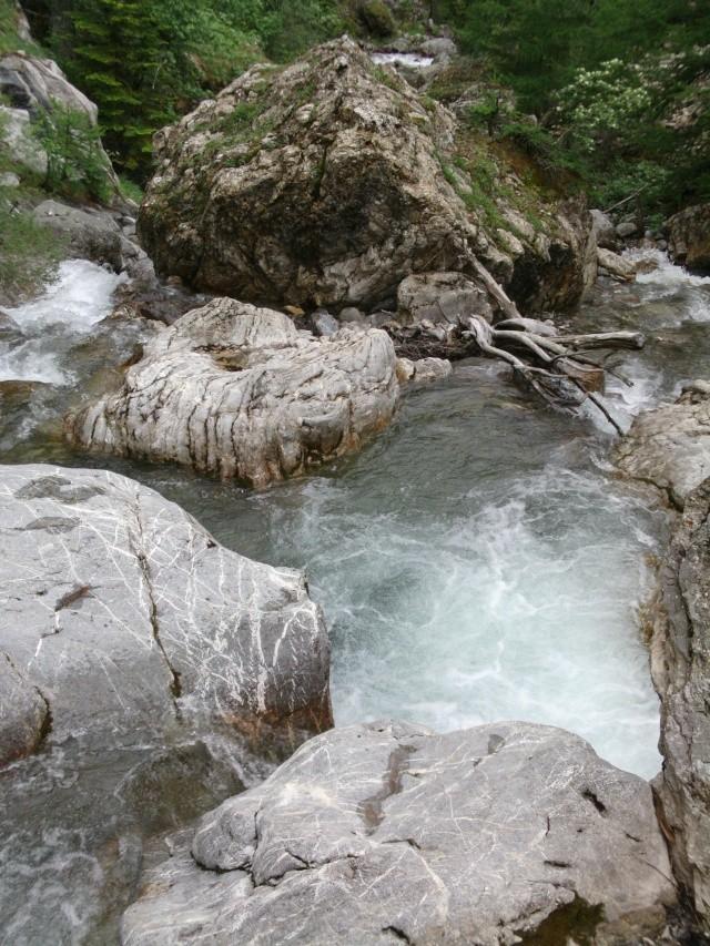Alpes, juin 2020 [ANNULE CAUSE COVID] 03311