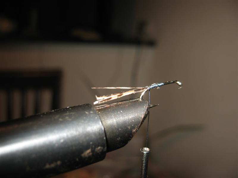 Pheasant tail (Fazanov rep) - step by step Img_1_10