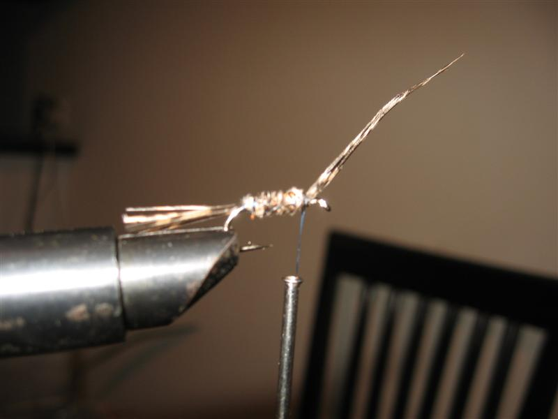 Pheasant tail (Fazanov rep) - step by step Img_4_10