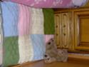 Ma galerie et celle de mes filles Hpim0611