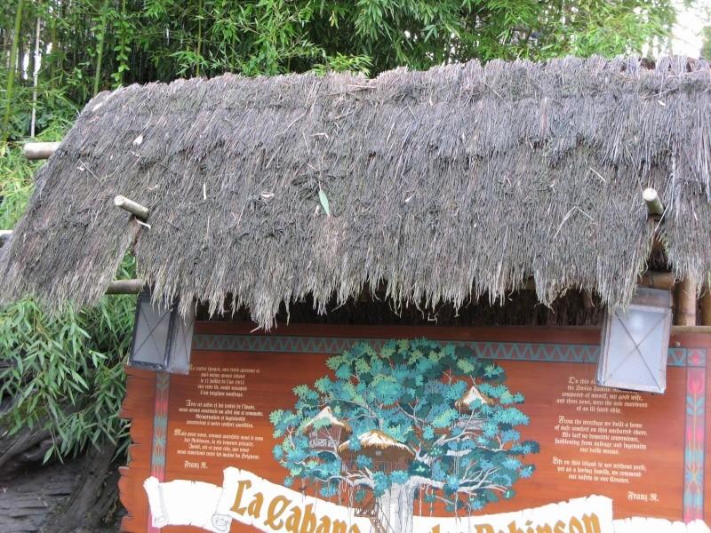 La Cabane des Robinson Entree10
