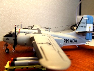 Modelismo Aeronaval - Armada Argentina Dscf0011