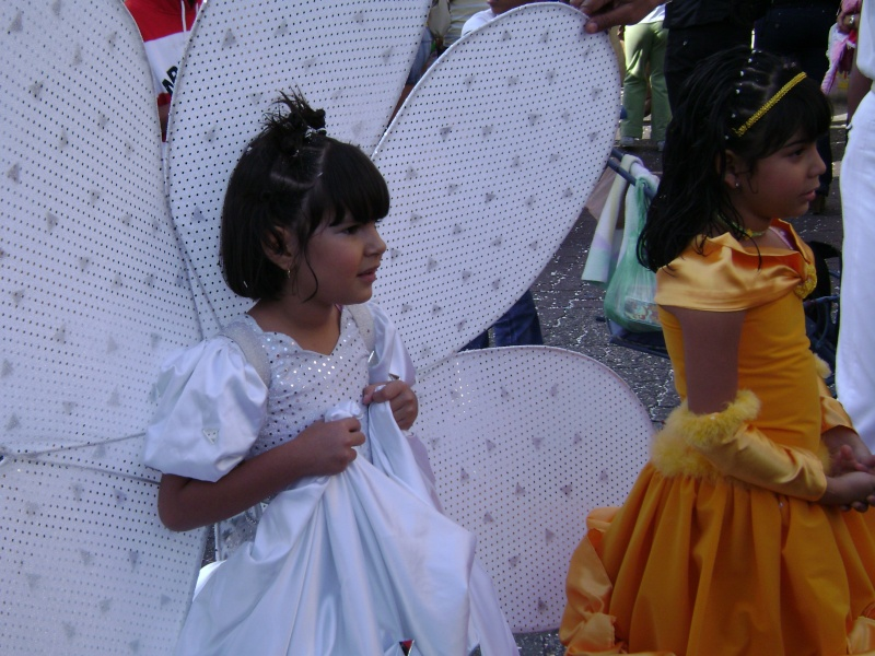 Carnavales 2008 en Sabana Grande Nina_p10