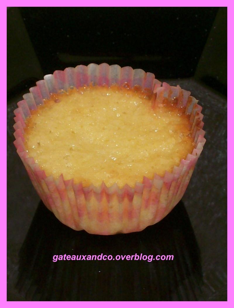 Cupcakes : recettes et décors simples - Page 3 00313