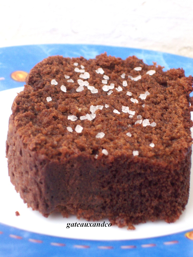 cake au chocolat Photo_49