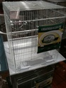 Choisir une cage Img_0710