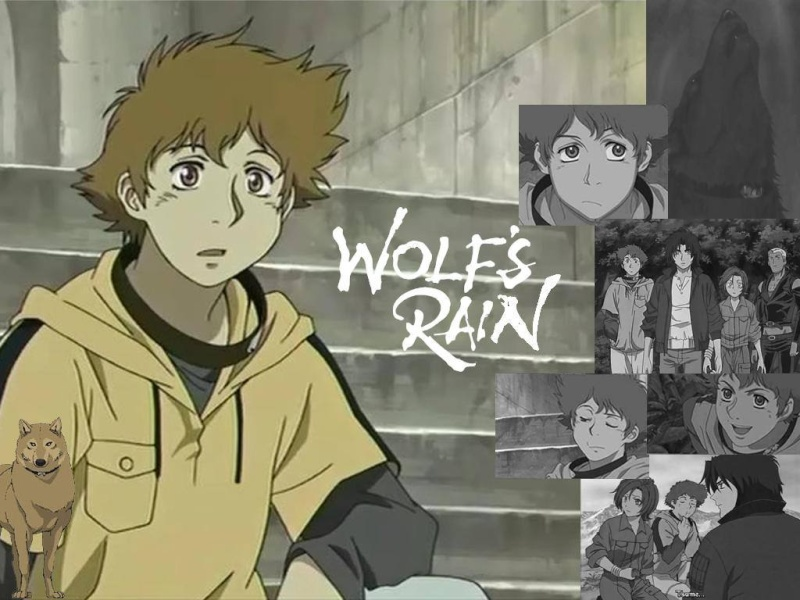 quien es mas lindo? Wolfs_16