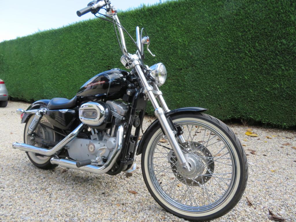 883 custom carbu de 2006(VENDUE) 311