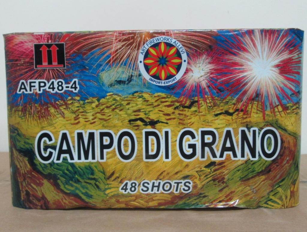 CAMPO DI GRANO 00710