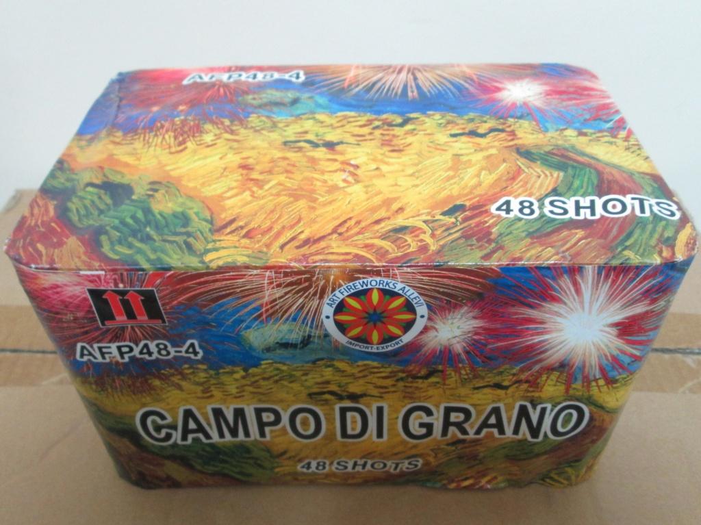 CAMPO DI GRANO 00810