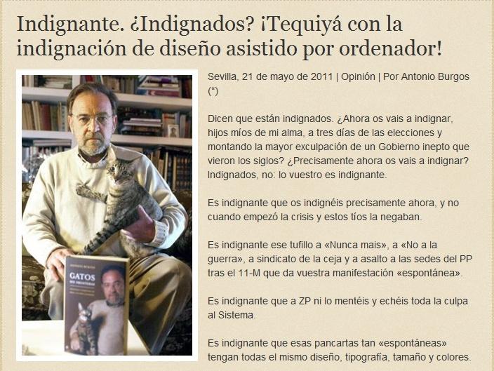 """Los """"indignados"""" del morro Ab11"""