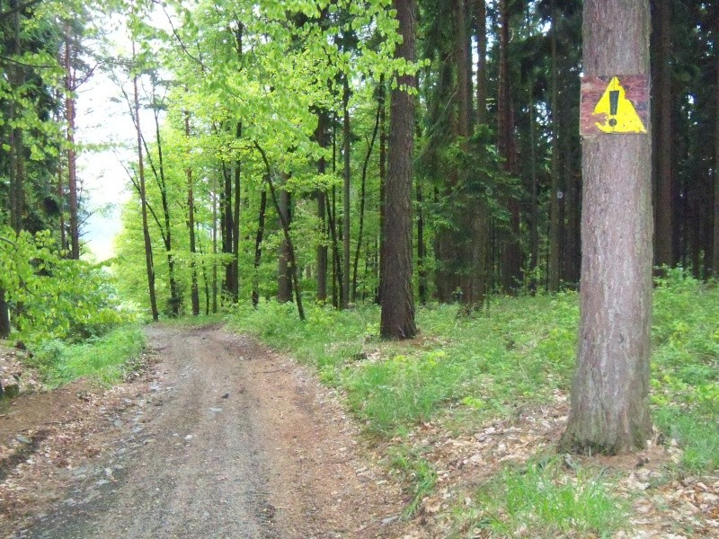 Un brin d'amertume à l'Est... (République Tchèque, Slovaquie, Hongrie) 100_2911
