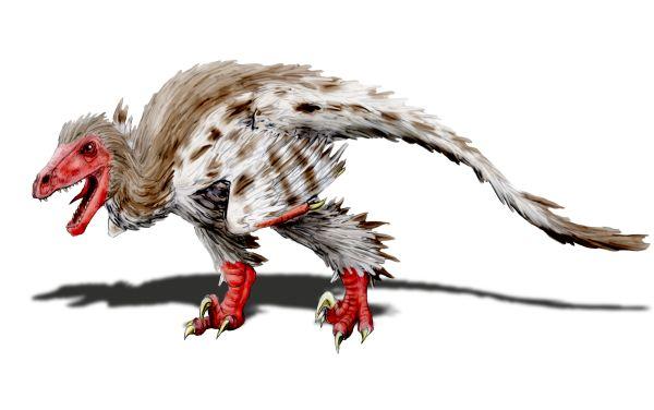 Schwimmender Theropode Balaur10