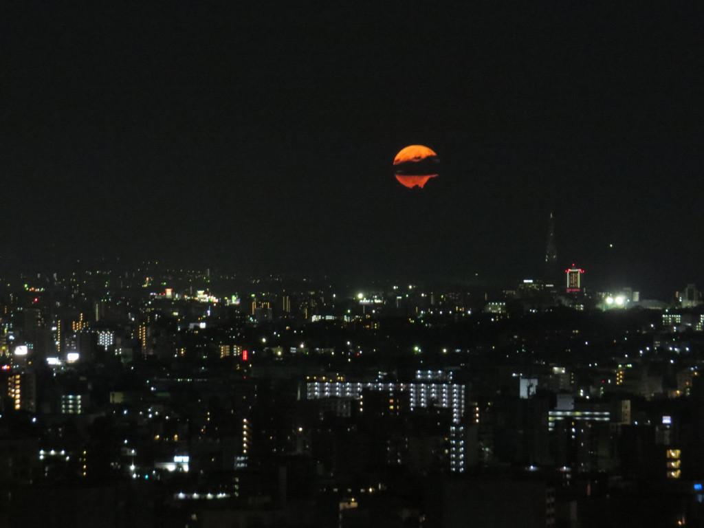 [TR] Toussaint 2018 : Shanghai DL - Osaka - Universal Studios Japan - Nagoya - Nagashima Spaland - Tokyo - Tokyo DL et DS - Page 2 3813