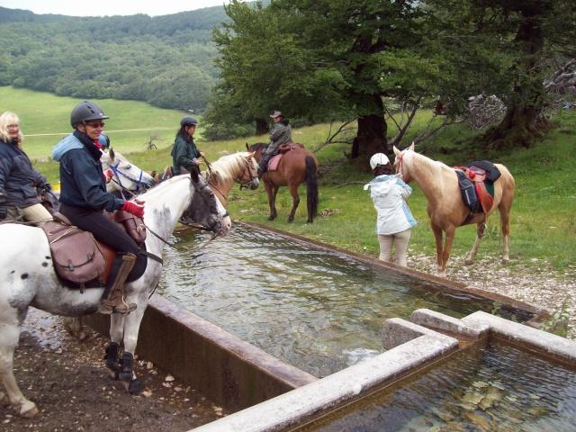 Bivouac 11-12-13 juin 2011 des m&m's  dans le Vercors ...les photos  à partir de la page 19!! - Page 12 100_1127