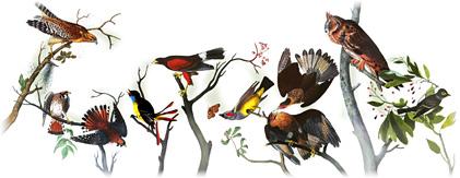 Google Logos - Seite 5 Audubo10