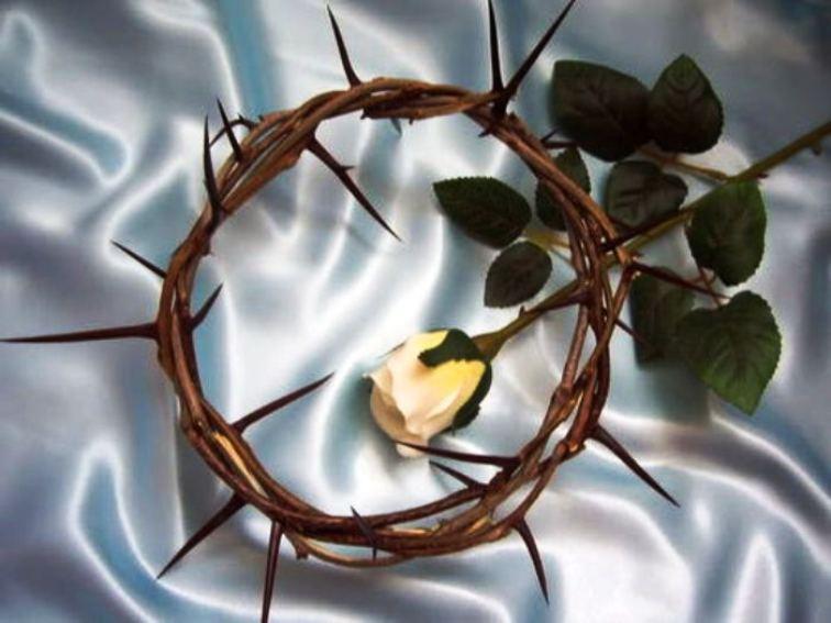 La Bible considère la souffrance, dans un monde que Dieu a créé bon, comme une intrusion. 357epi11