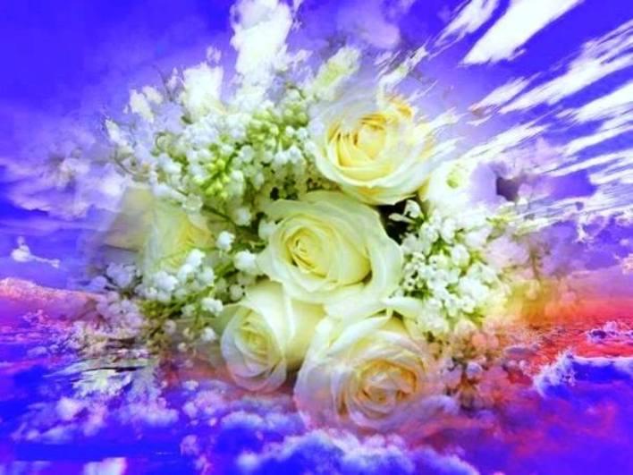 La rosée est un don du ciel ! __125510