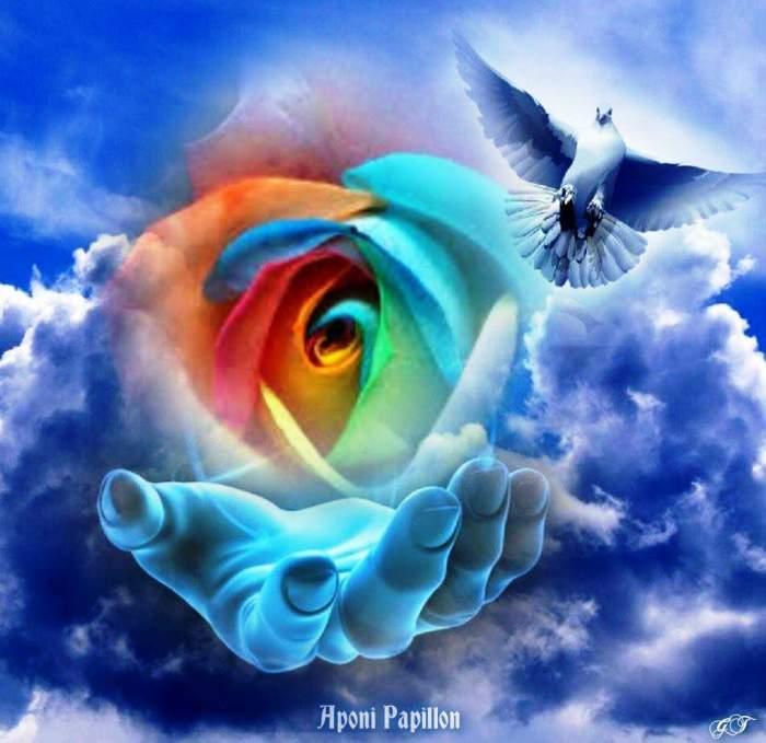 Les anges sont des esprits ayant diverses fonctions au service de Dieu __240610