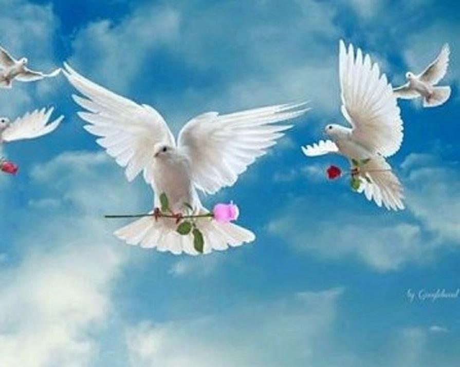 """Dieu a donné un """"Ordre de mission"""" à chacun d'entre nous ___72224"""