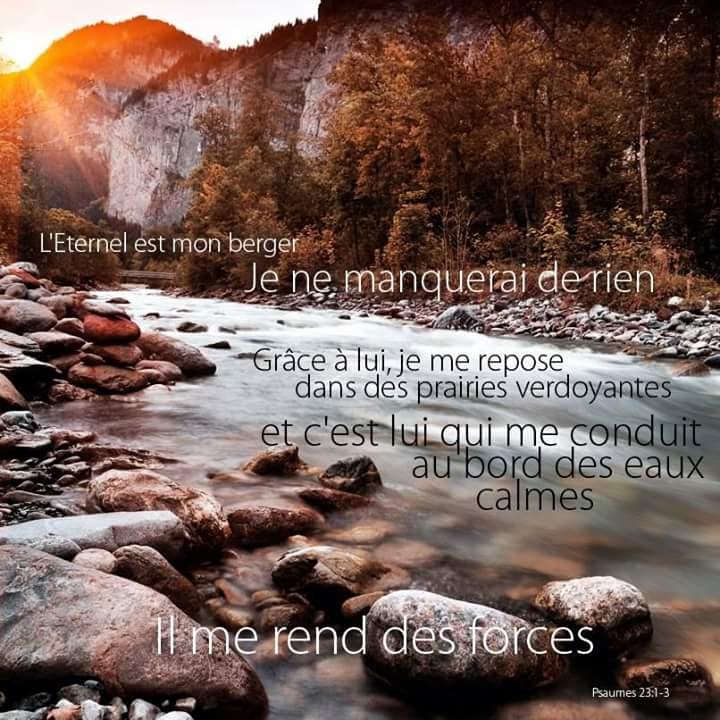 Notre espérance en Christ pour l'avenir est le motif et la base de notre joie sur la terre. Berger11