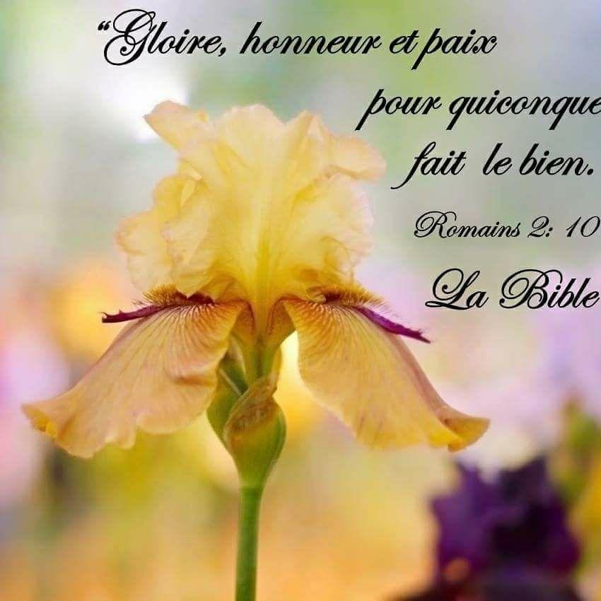 Nous prouverons notre amour pour Dieu et notre fidélité à Dieu en faisant ce qui lui est agréable Bien5210