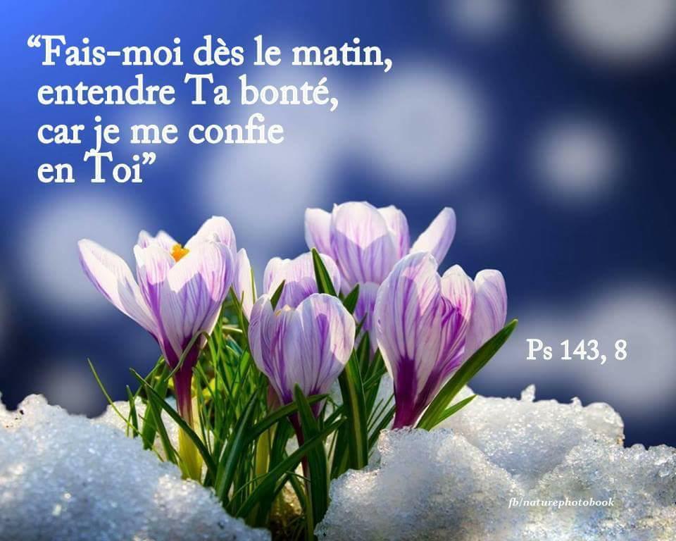 Nous prouverons notre amour pour Dieu et notre fidélité à Dieu en faisant ce qui lui est agréable Bontzo10