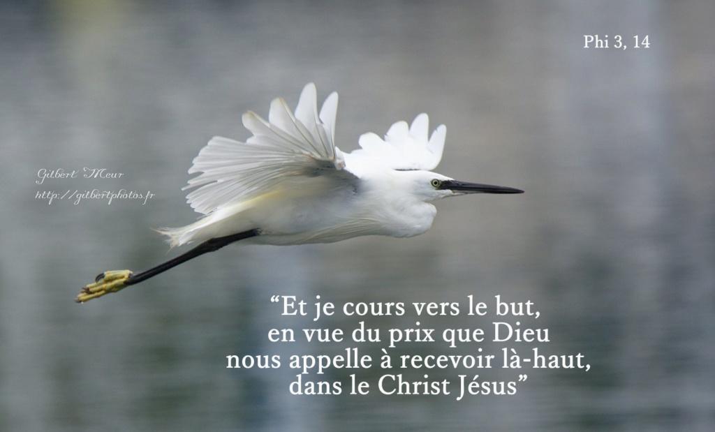 Nous prouverons notre amour pour Dieu et notre fidélité à Dieu en faisant ce qui lui est agréable But05111