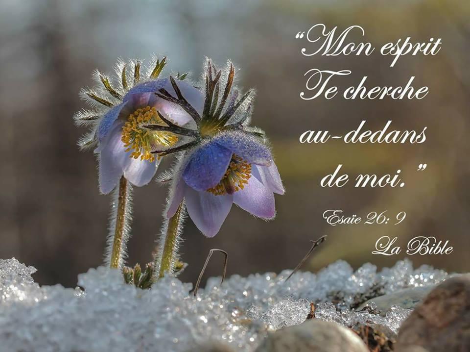 Rien n'est comparable à l'amour de Dieu Esprit14