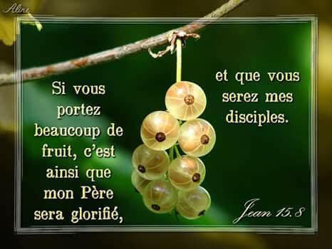 La vie est faite de choix Fruit812