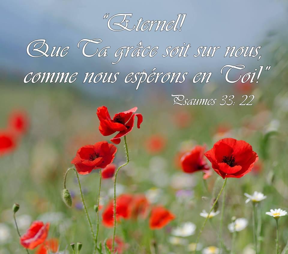 Notre espérance en Christ pour l'avenir est le motif et la base de notre joie sur la terre. Grace510