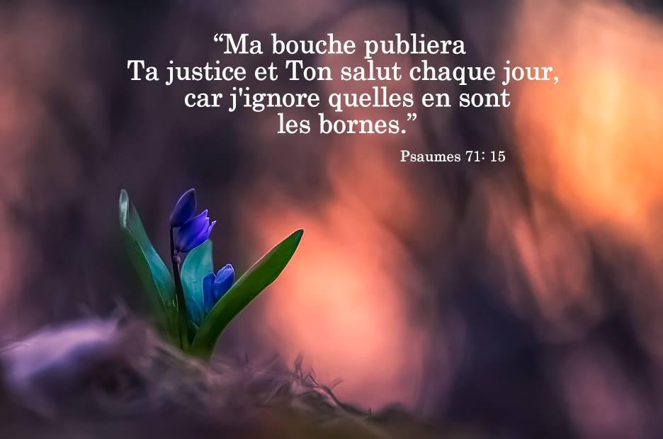 Nous prouverons notre amour pour Dieu et notre fidélité à Dieu en faisant ce qui lui est agréable Justic13