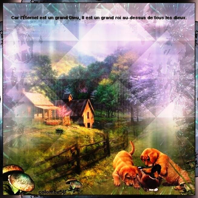 Nous prouverons notre amour pour Dieu et notre fidélité à Dieu en faisant ce qui lui est agréable L_eter11