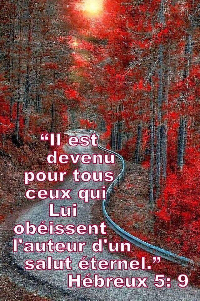 Nous prouverons notre amour pour Dieu et notre fidélité à Dieu en faisant ce qui lui est agréable Obeir011