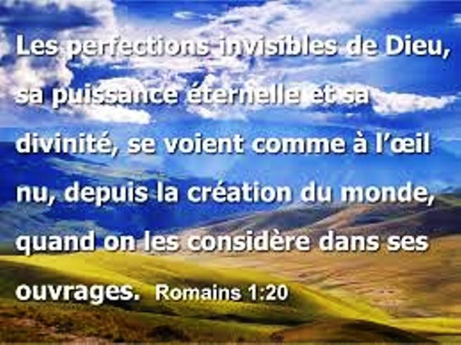 Nous prouverons notre amour pour Dieu et notre fidélité à Dieu en faisant ce qui lui est agréable Perfec10