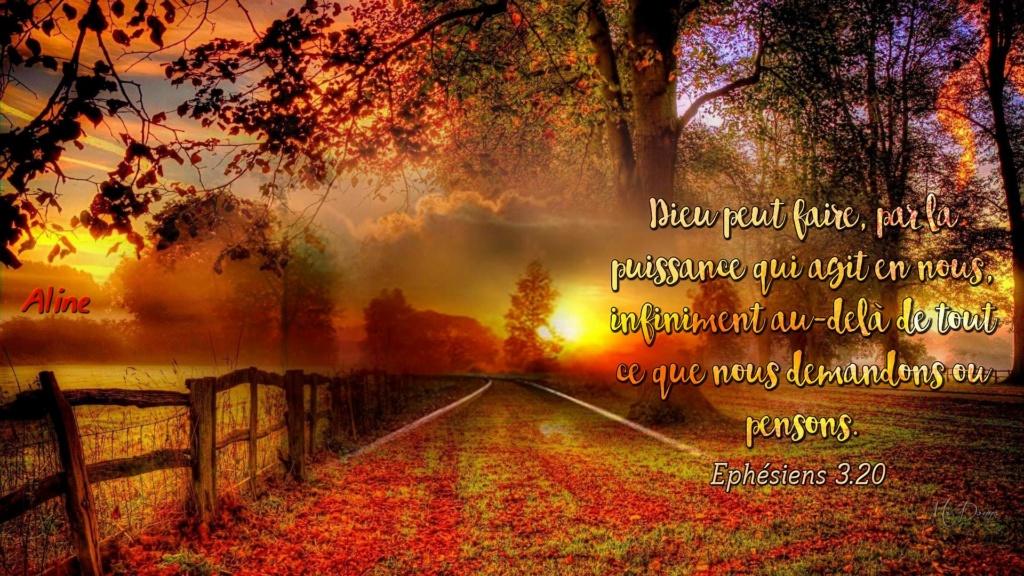 Nous prouverons notre amour pour Dieu et notre fidélité à Dieu en faisant ce qui lui est agréable Priere12