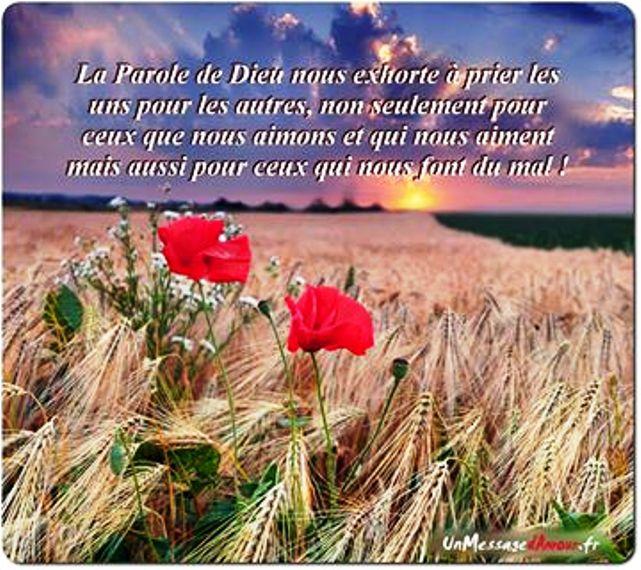 Nous prouverons notre amour pour Dieu et notre fidélité à Dieu en faisant ce qui lui est agréable Priere14