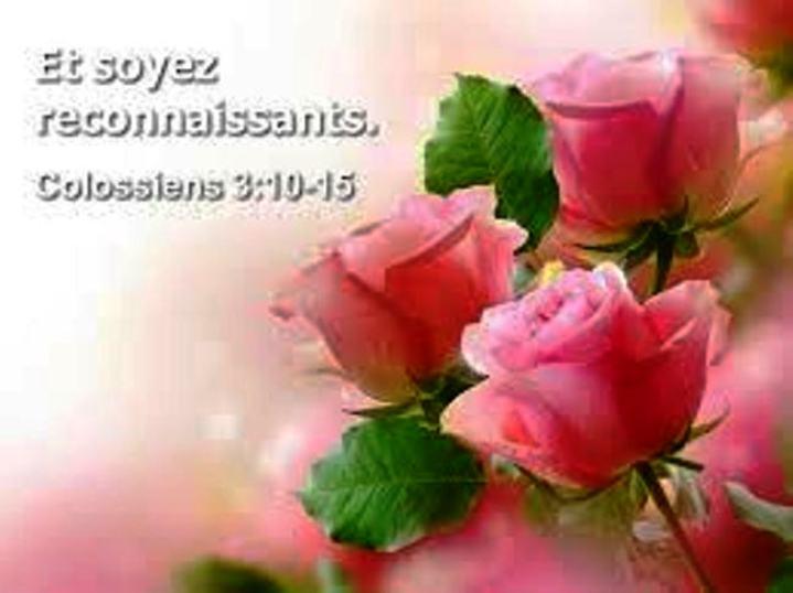 Rien n'est comparable à l'amour de Dieu Reconn11
