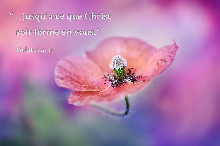 Rien n'est comparable à l'amour de Dieu Ressem10