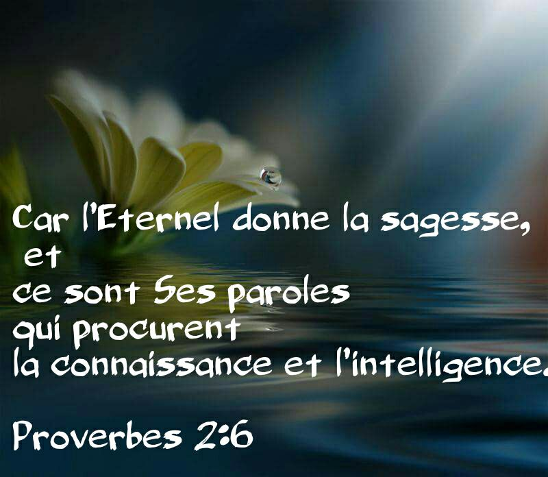 Nous prouverons notre amour pour Dieu et notre fidélité à Dieu en faisant ce qui lui est agréable Sagess11