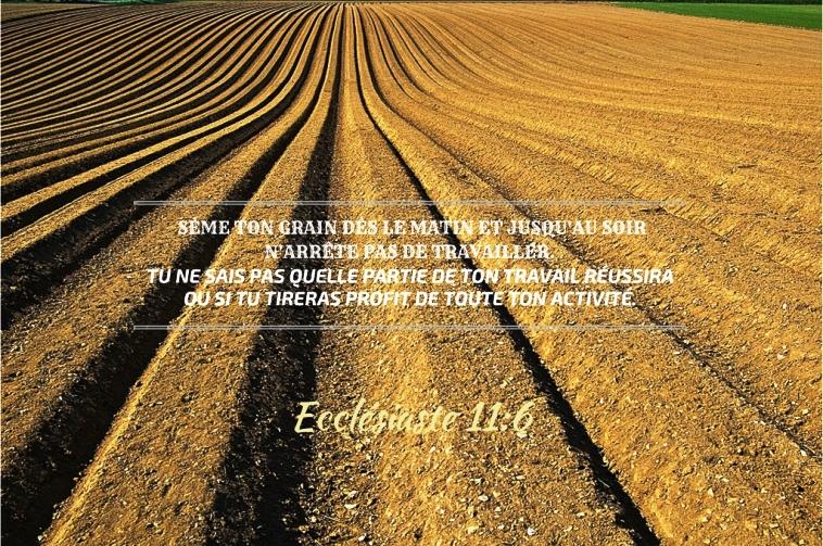Nous prouverons notre amour pour Dieu et notre fidélité à Dieu en faisant ce qui lui est agréable Semest10