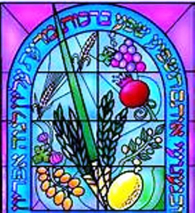 Fête juive : Souccoth, fête des huttes, Fête de la Joie éternelle Sukkot10