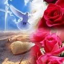 Soyez prêts à chaque instant à vous pardonner aussi généreusement que Dieu vous a pardonné en Christ.  ___25_19