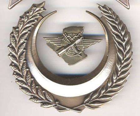 بعض شعارات الجيش الوطني الشعبي المميزة